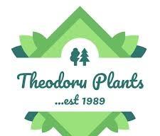 ΦΥΤΩΡΙΟ THEODOROU PLANTS ΣΤΑΥΡΟΣ ΘΕΣΣΑΛΟΝΙΚΗ ΘΕΟΔΩΡΟΥ ΤΡΙΑΝΤΑΦΥΛΛΟΣ